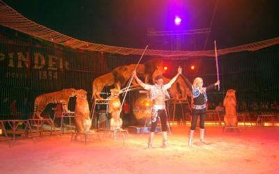 Circus PINDER